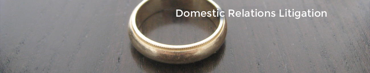 domestic_disputes